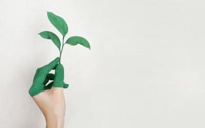 Piano Nazionale Transizione 4.0 e investimenti per l'industria